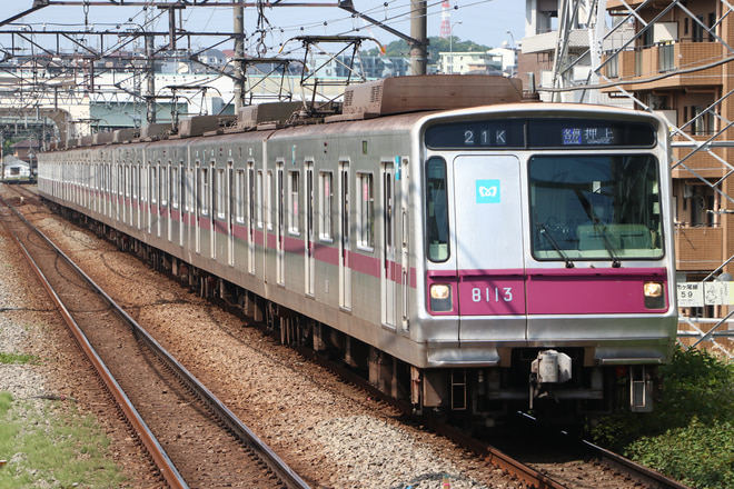 8000系8113Fを市が尾駅で撮影した写真