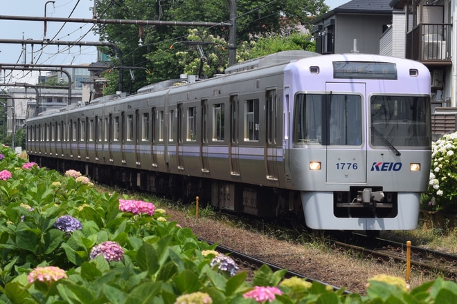 富士見ヶ丘検車区1000系1726Fを高井戸~浜田山間で撮影した写真