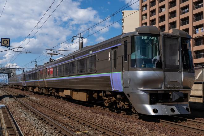 札幌運転所785系NE-502編成を新札幌駅で撮影した写真