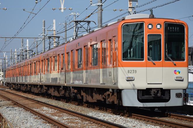 尼崎車庫8000系8239Fを別府~播磨町間で撮影した写真