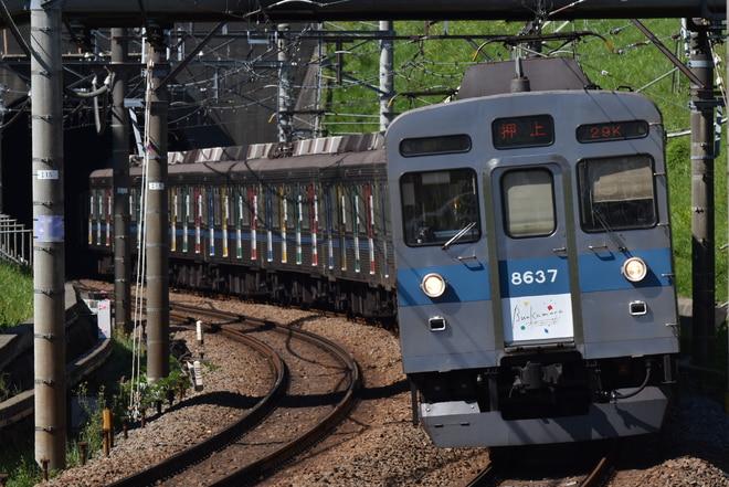 長津田検車区8500系8637Fを田奈~青葉台間で撮影した写真