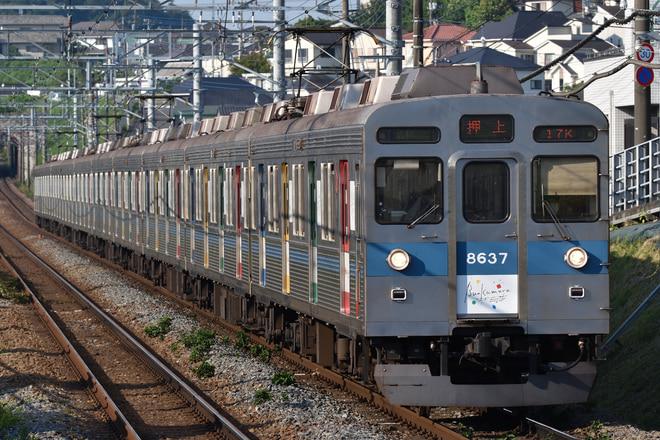 長津田検車区8500系8637Fをつくし野駅で撮影した写真