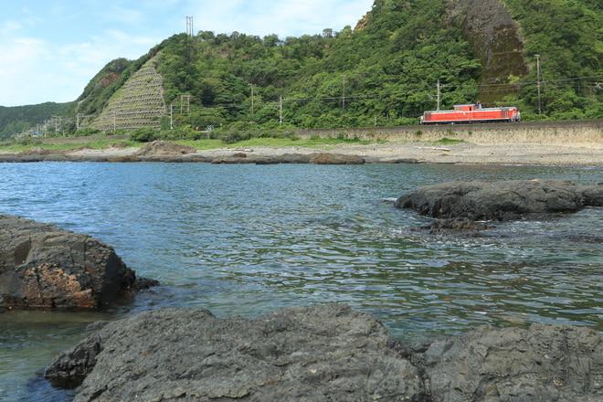 網干総合車両所宮原支所DD511193を古座~紀伊田原間で撮影した写真