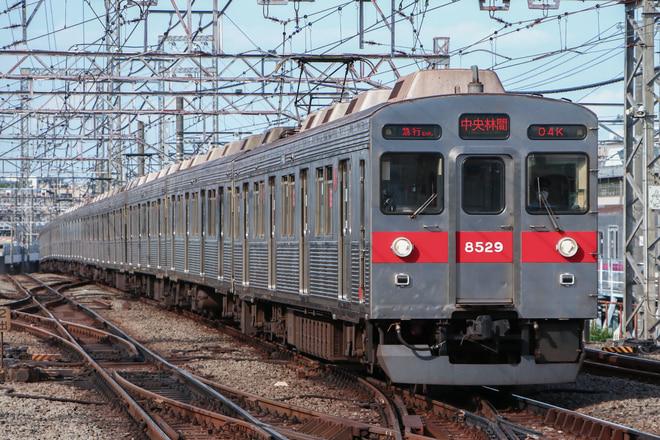 8500系8629Fを鷺沼駅で撮影した写真