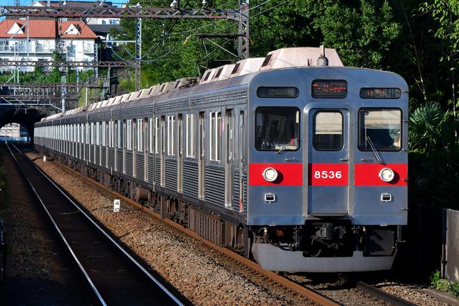 8500系8636fを田奈駅で撮影した写真